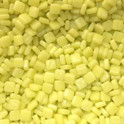 Og-17.1 Gelbe Narzisse